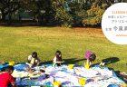 【知育】ワクワクがいっぱい! 子どもの心を刺激するアート教育(実践編)――今泉 真樹先生インタビュー