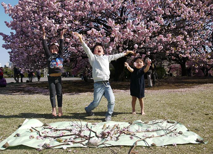 桜の木の下で子どもたちが手を広げている