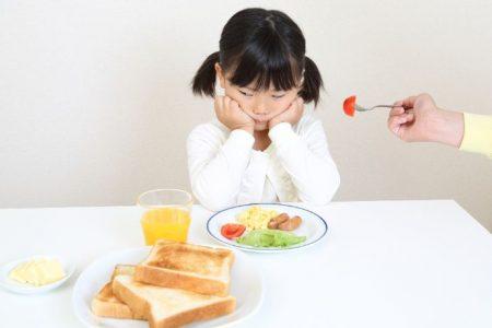 好き嫌いの解決ポイントは、「豊かな食体験」と「食材を身近に感じられる習慣」にあり!