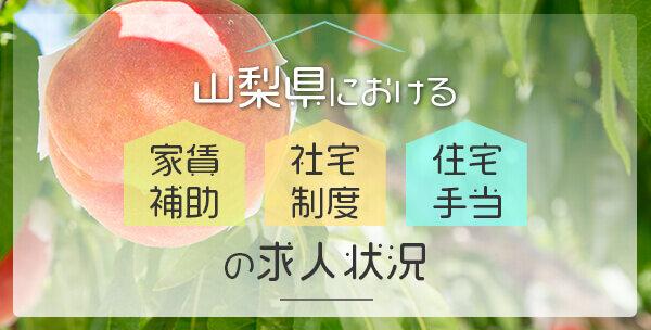202105_yamanashi-auxiliary.jpg